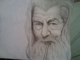 Gandalf LotR by Nicollettey
