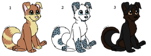 Puppy Adoptables 2 :OPEN: by russkiadopts