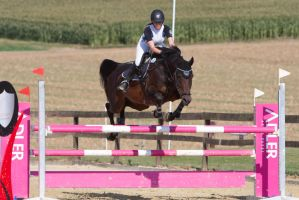 Show Jumping Refusal Series 6 by LuDa-Stock