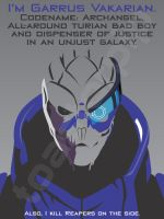 Mass Effect - Garrus Vakarian by toasterpip
