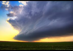 The Flanking Meso by FramedByNature