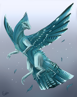 Dragon of Paradise - Blue jay by 98embla