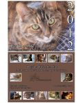 A Day In A Life of A Cat Calendar by lilly-peacecraft