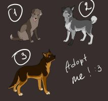 Point adoptables.closed by ArtemisA-wolf