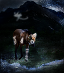 Fantasy Wolf Contest: Shraya by 4EverIsntLongEnough