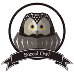 Boreal Owl by kravinoff