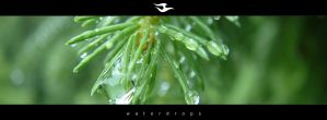 waterdrops by zmeden