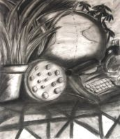 Still life (charcoal) by chi171812
