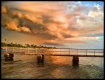 Storm Over Dog Beach by lost-remains