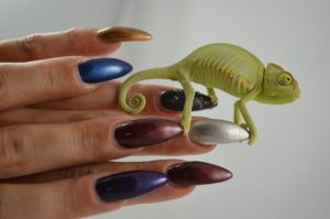 Chameleon Nails by Ambima