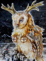 Some nights you see not an Owl... by vifbeau