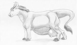 Cowdragon by Beuwen