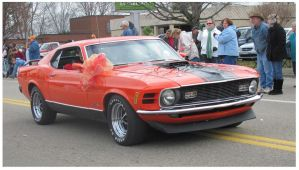 Christmas Mustang - Greenback TN 2011 by CrystalMarineGallery