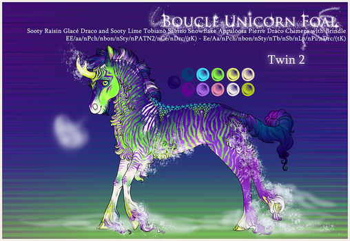 Boucle Foal F355 | Party Twin 2 by jouroo