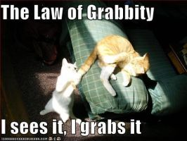 Law of Grabbity by PsychedelicAnimagus