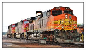 BNSF by erbphotography