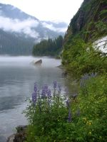 Misty Fjords by SixdayTK