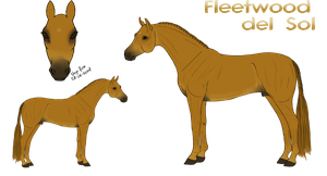 Fleetwood del Sol Ref. by Cerulean-Sky-Stables