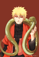 20130209-Frog and Snake by Shikaobing