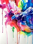 Rainbow Bird by Lucky978
