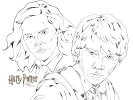 Ron and Hermione by wernerth