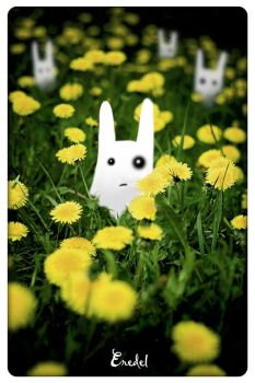 Follow The White Rabbit by Eredel