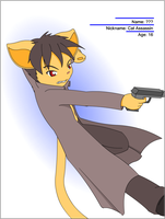 Cat Assassin by vytalibus