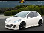 Peugeot 207 by MurilloDesign