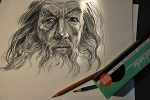 Gandalf by banhatin