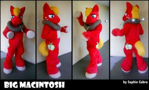 MLP FiM Big Macintosh Cosplay by sophiecabra
