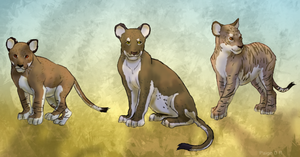 Cubs by Pagerda