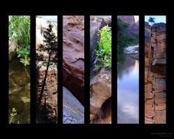 Zions Canyon by doodlediddy