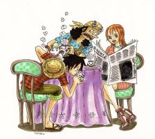 one piece.luffy,usopp and nami by heivais