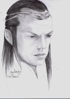 LOTR Actor 9: Hugo Weaving by Laiyla