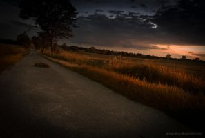 I'm on my way home by antarialus