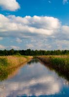 A Canal by marius-s