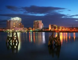 Cardiff Bay at Night by nectar666
