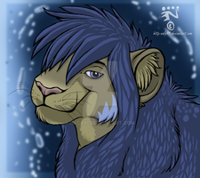 Gift icon by Nala91