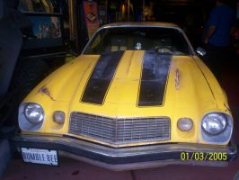 the original bumble bee by mr1000