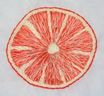 Orange Embroidery by laurelin77