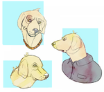 dogs by TheBirb