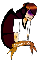 YOUTUBE STUFF AND THINGS?: Enderlox! by zeldaadicXD