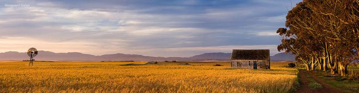 Photo Heaven by hougaard