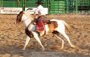 Rodeo-07 by AstriexEquineStock