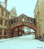 Bridge of Sights ~ Oxford in January by iNaturel