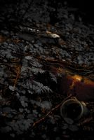 Polluted II by mprox