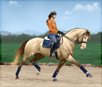 Hydroree training by BH-Stables