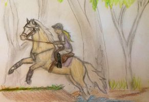 Entry for Seahorse stables show by Flyingfetlocks