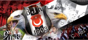 BJK 2009 by serezmetin