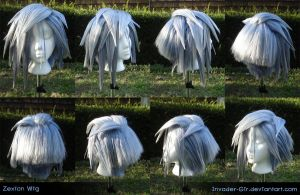 Zexion Wig 3 by invader-gir